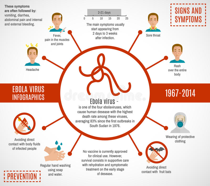 Viral Infection Link To Sjogren S Syndrome: Ebola Virus Infographics Stock Vector. Illustration Of