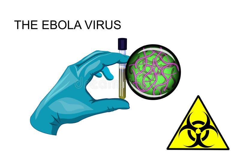 Ebolaviruset Biohazard stock illustrationer
