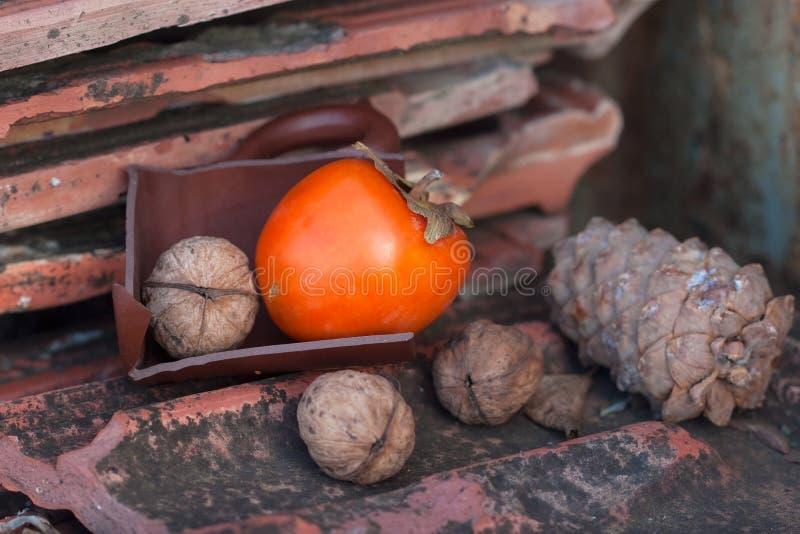 Ebony, walnuts and cone royalty free stock image