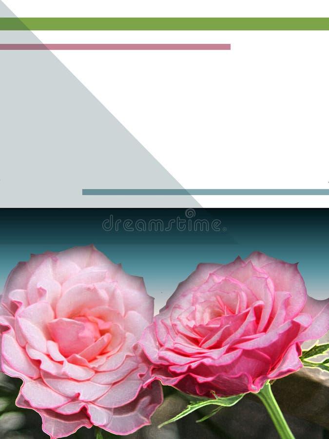 eBook盖子的浪漫玫瑰 免版税库存图片