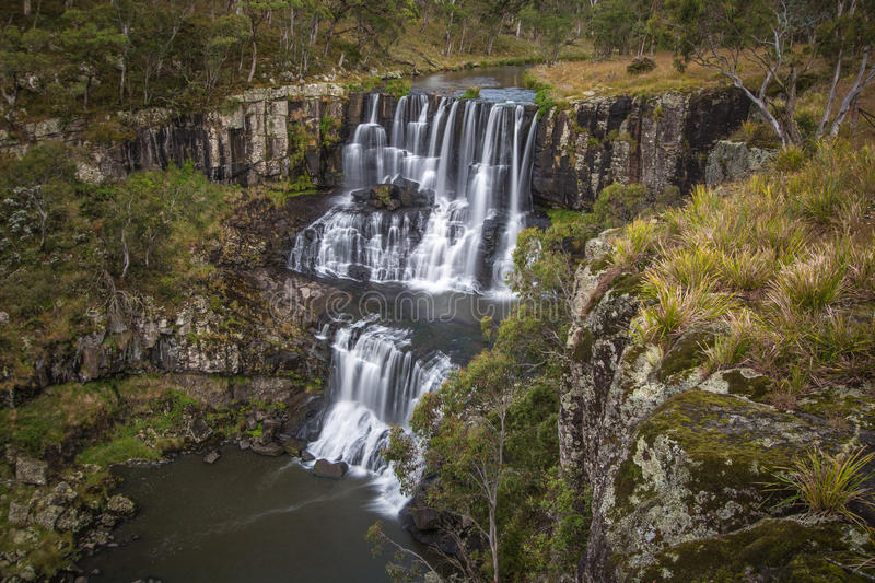 Download Ebor Falls stock image. Image of lookout, wide, volcanic - 65051331