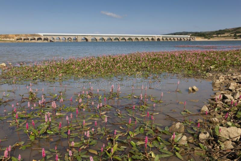 Ebro水库,布尔戈斯 免版税库存照片