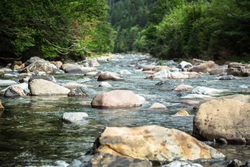 Ebro River através de um vale em Cantábria, Espanha imagem de stock royalty free