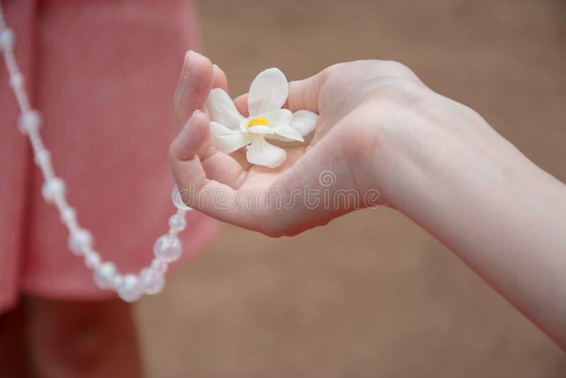 Eccetto lo sposo dall'avvicinamento della sposa, nozze tailandesi immagini stock