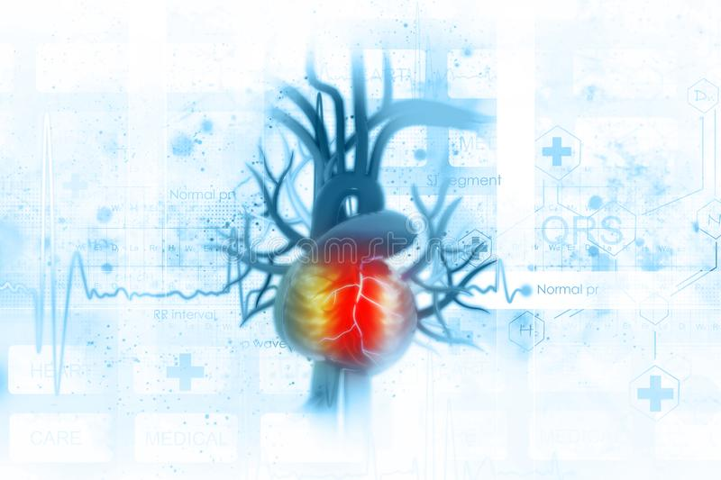 ECG background with human heart. On scientific background royalty free illustration