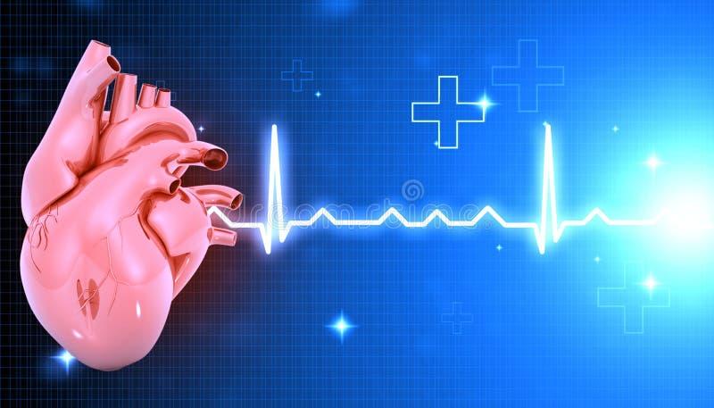 ECG graph with heart. 3d illustration stock illustration
