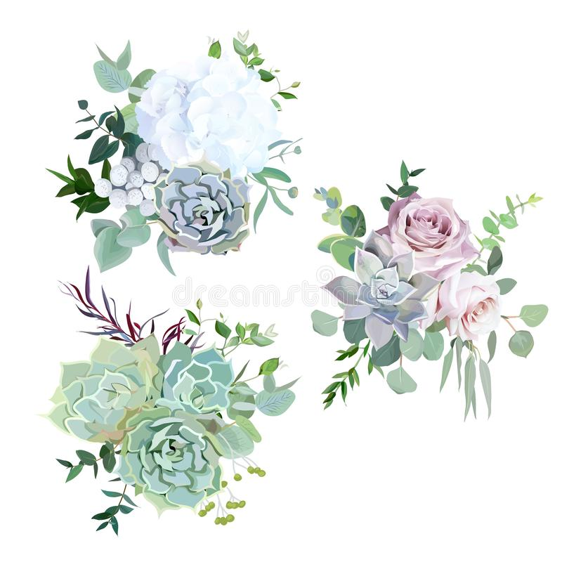 Echeveria blue, grey, mint succulents, white hydrangea, pale pink and lavender rose,greenery stock illustration