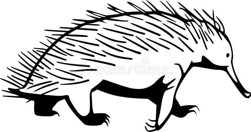 Echidna stock illustratie