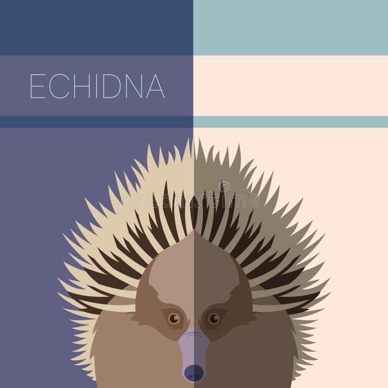 Echidna-flache Postkarte vektor abbildung