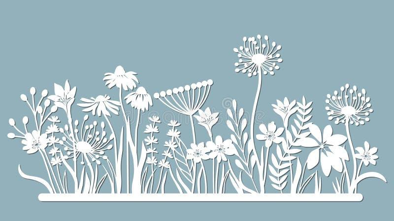 Echinacea, chamomile, schefler, noble hepatica, zephyrantes, stokesia. Vector illustration. Set of paper flower, stickers. Laser. Cut. Set template for laser royalty free illustration