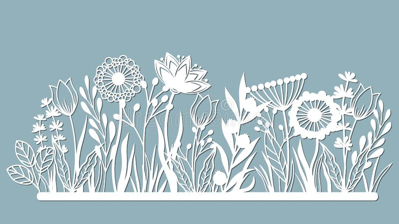Echinacea, chamomile, schefler, noble hepatica, zephyrantes, stokesia. Vector illustration. Set of paper flower, stickers. Laser. Cut. Set template for laser vector illustration
