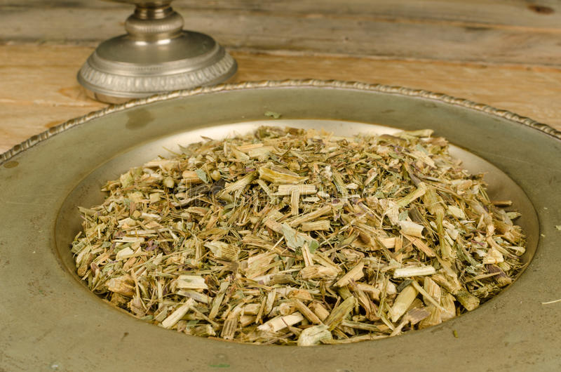 Echinacea herbal infusion stock images