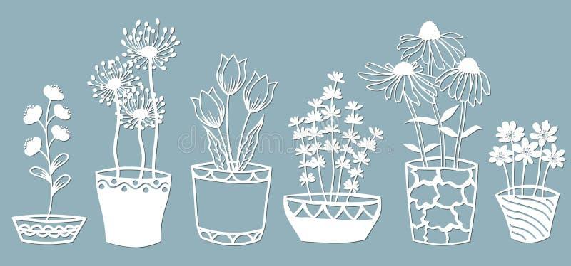 Echinacea, kamille, schefler, edele hepatica, zephyrantes, stokesia Vector illustratie Reeks van document bloem in potten, sticke vector illustratie