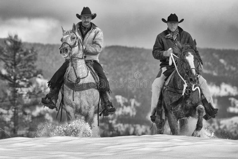 Echt - tijdcowboys royalty-vrije stock afbeelding