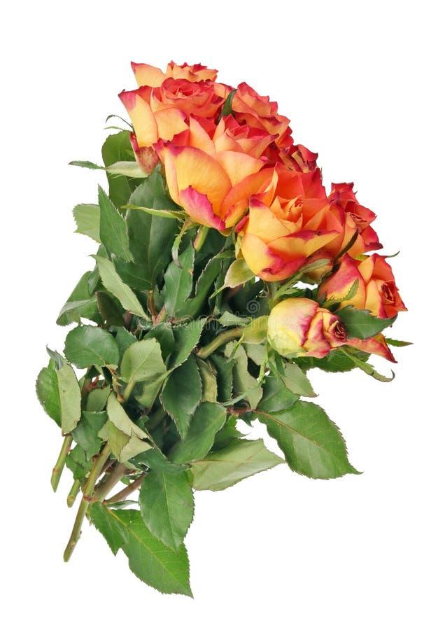 Echt vliegend huwelijksboeket van rode geïsoleerde rozen royalty-vrije stock afbeelding