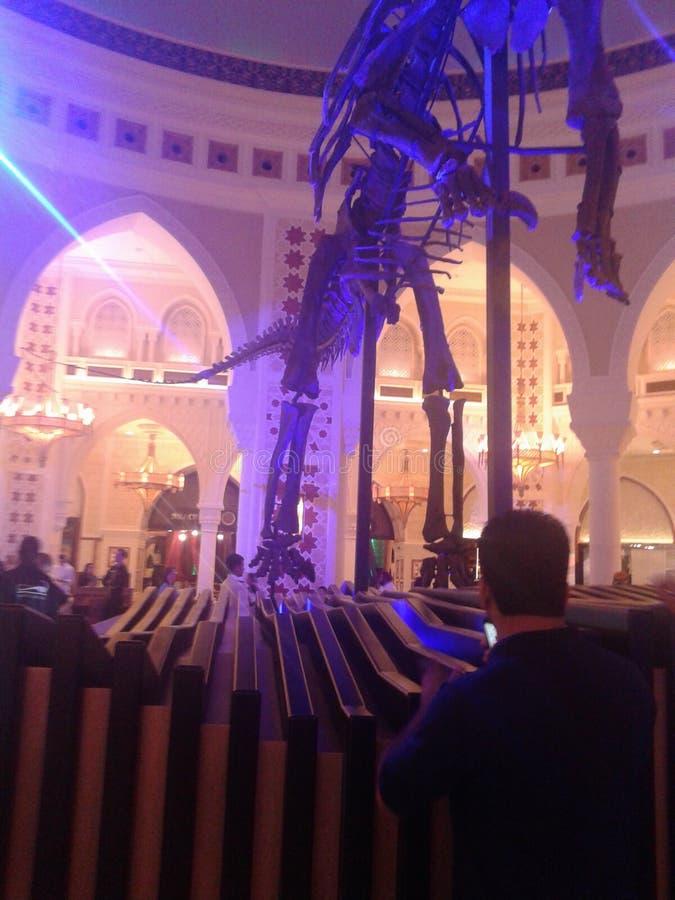 Echte Dinosour bij de wandelgalerij van Doubai stock foto's