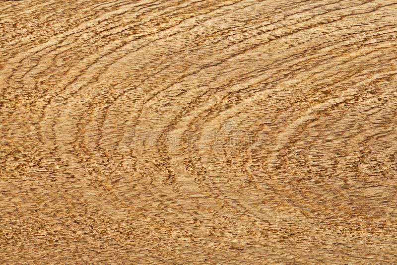 Echte houten korreltextuur royalty-vrije stock foto's