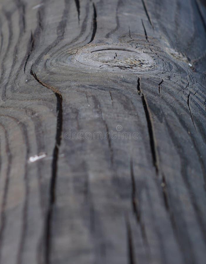 Echte houten textuur stock afbeelding