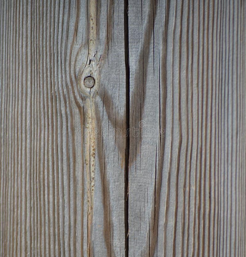 Echte houten textuur stock foto