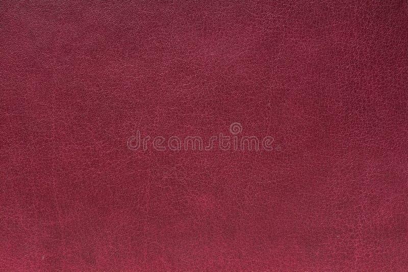 Echte Leertextuur royalty-vrije stock fotografie