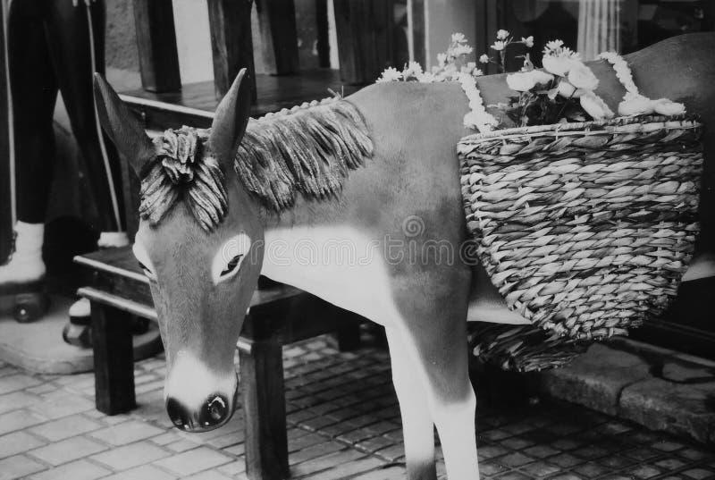 Echte levensgrote plastic ezel in zwart-wit royalty-vrije stock afbeelding