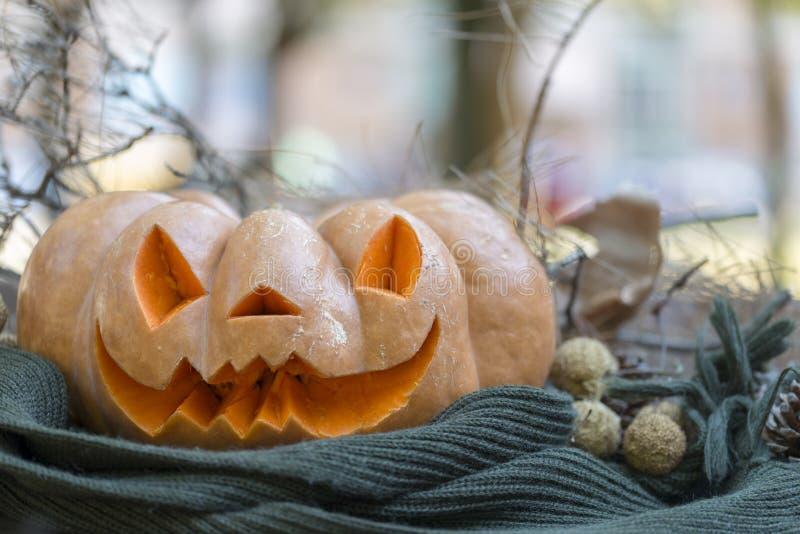 Echte oranje Halloween-pompoen met het snijden royalty-vrije stock afbeelding