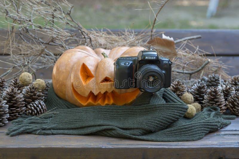 Echte oranje Halloween-pompoen met het snijden royalty-vrije stock afbeeldingen