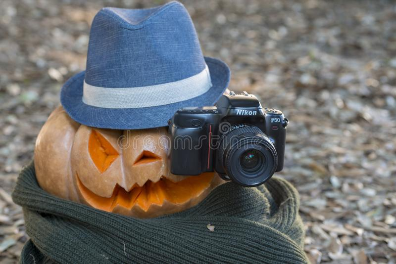 Echte oranje Halloween-pompoen met het snijden stock afbeeldingen