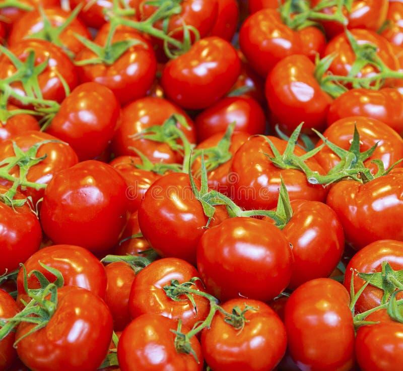 Echte organische tomaten in een stapel stock fotografie