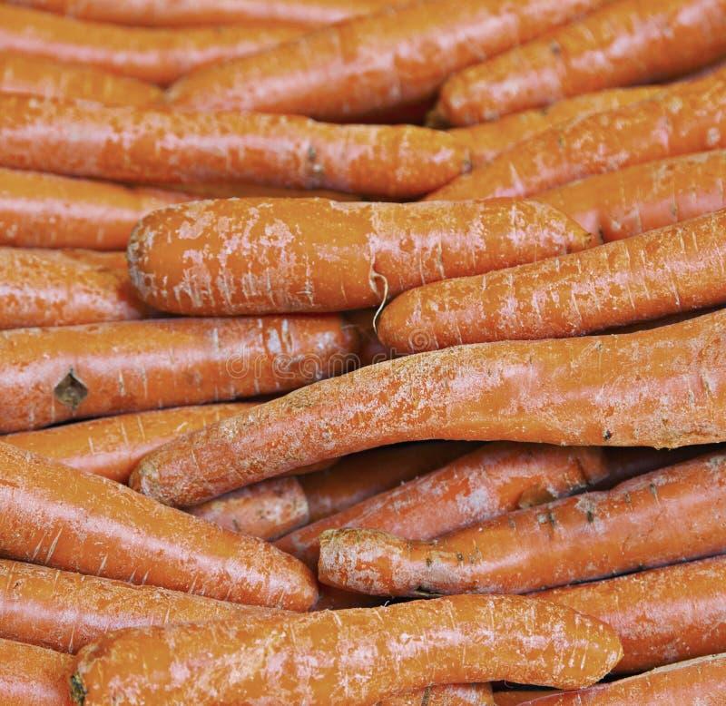 Echte organische wortelen bij box royalty-vrije stock afbeelding