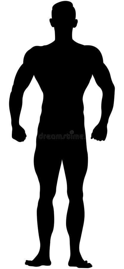Echte spier atletische bodybuilder royalty-vrije illustratie