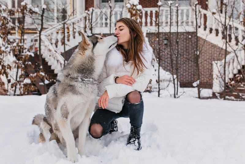 Echte vriendschap, mooie gelukkige ogenblikken van husly het charmeren van jonge vrouw die met leuke hond van koude de wintertijd stock foto's