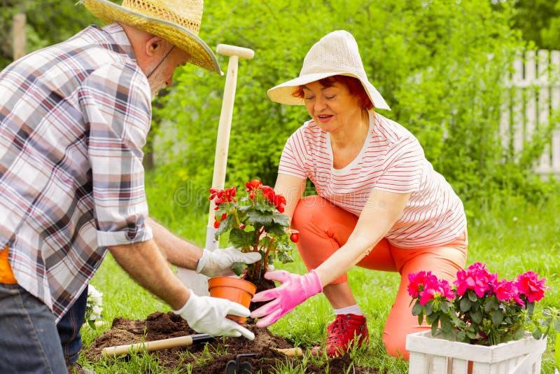 Echtgenoot en vrouwen het zetten bloeit in grond terwijl het planten van hen royalty-vrije stock afbeelding