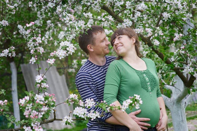 Echtgenoot en zijn zwangere vrouw in de de lente bloeiende tuin stock fotografie