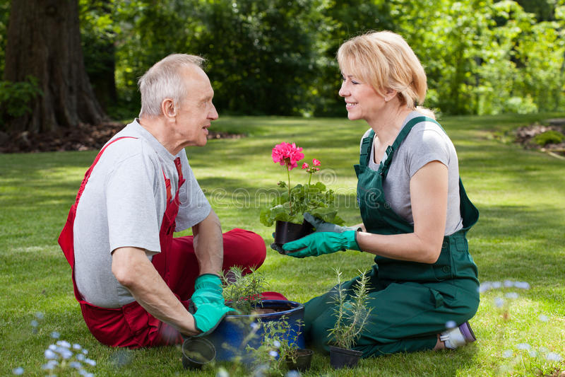 Echtpaar die in de tuin spreken stock foto's