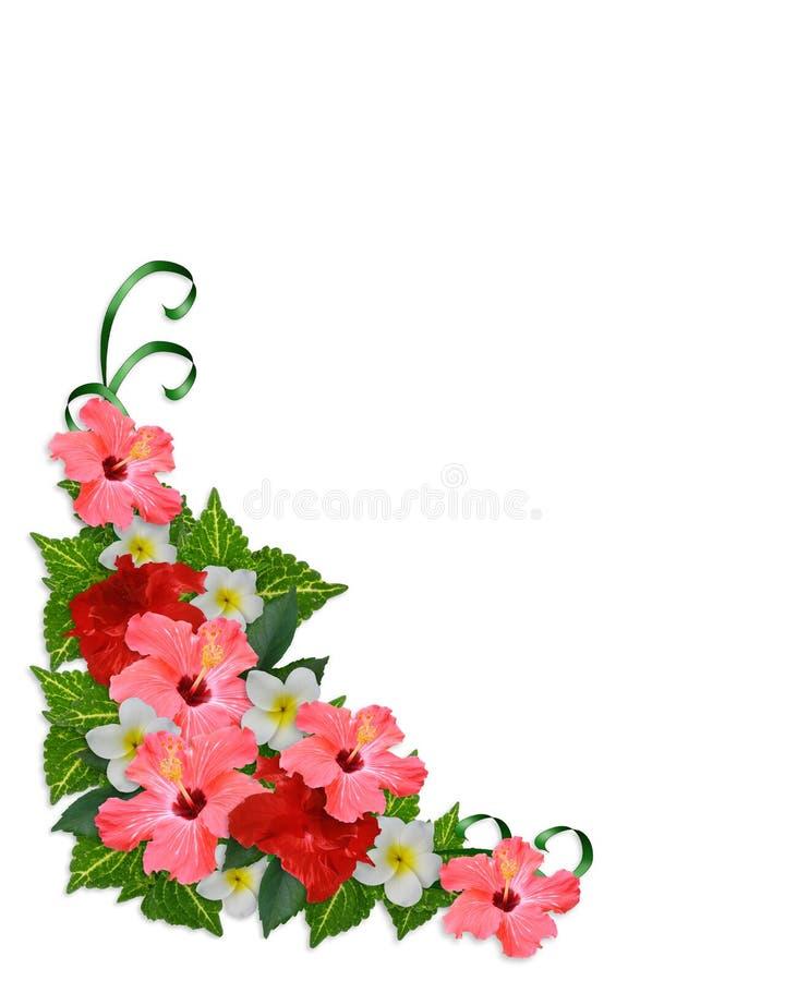 Eckrand der tropischen Blumen lizenzfreie abbildung
