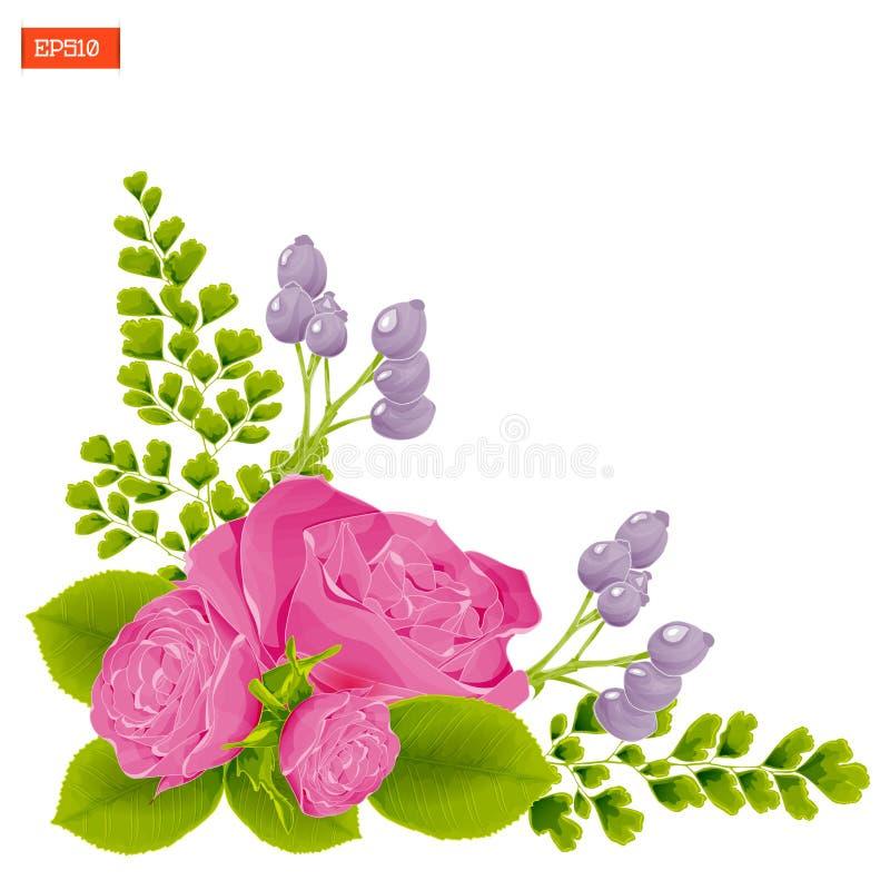 Eckzusammensetzung Rosarose blüht mit Blättern, den Knospen, Hagebutte und Farn stock abbildung