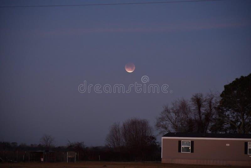 Eclipse lunar da lua super do sangue fotos de stock