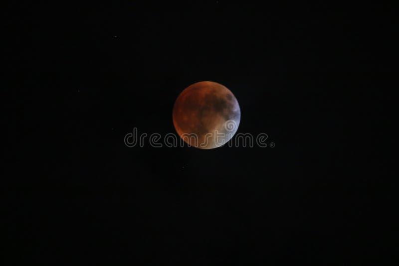 Eclipse lunar super da lua do sangue fotografia de stock