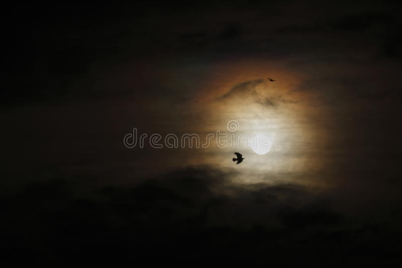 Eclipse of the sun. By the dark clouds stock photos
