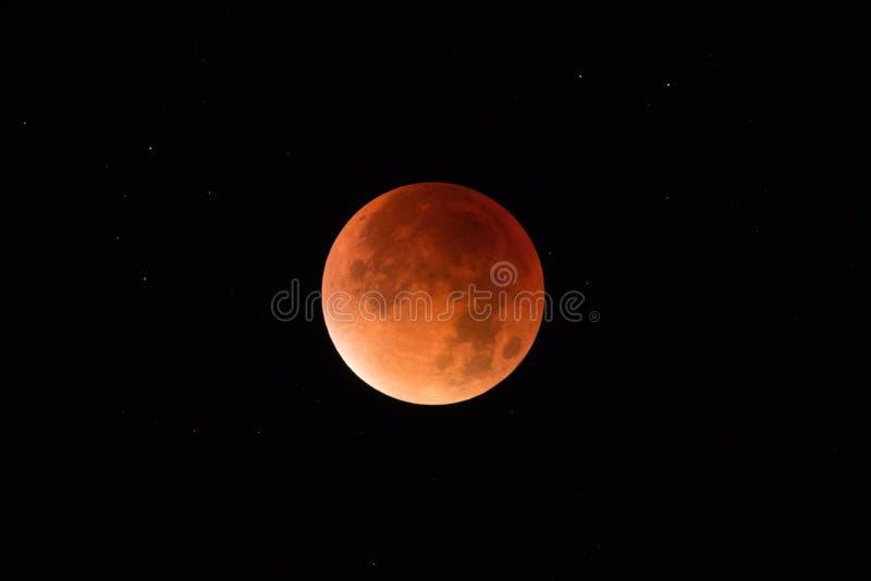 Eclissi eccellente della luna - luna del sangue immagine stock libera da diritti