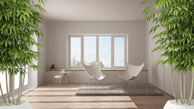 Eco与盆的竹植物的温室内部,自然室内设计概念,有大窗口的现代白色客厅,微型 免版税库存图片