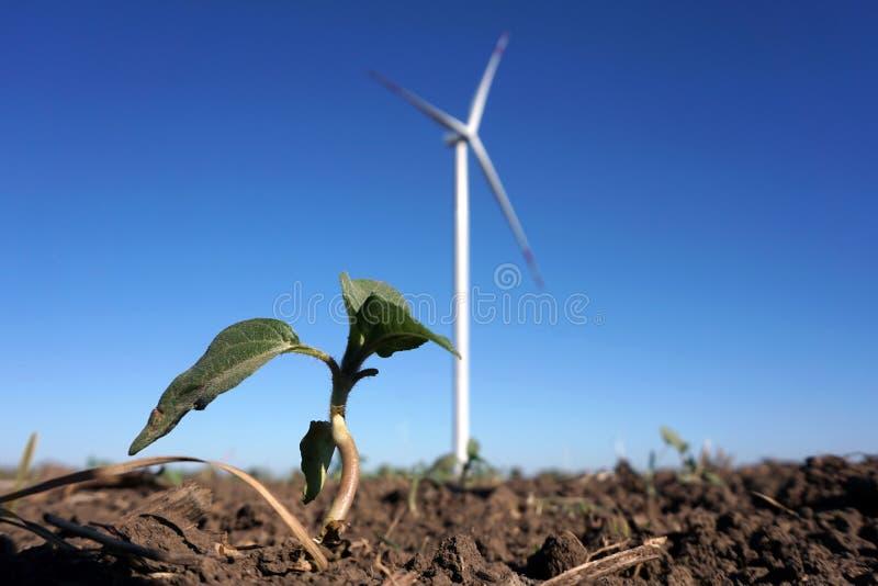 Eco力量,有天空蔚蓝的风轮机 供选择的电的风轮机 有能承受的eco的可更新的电农场 免版税图库摄影