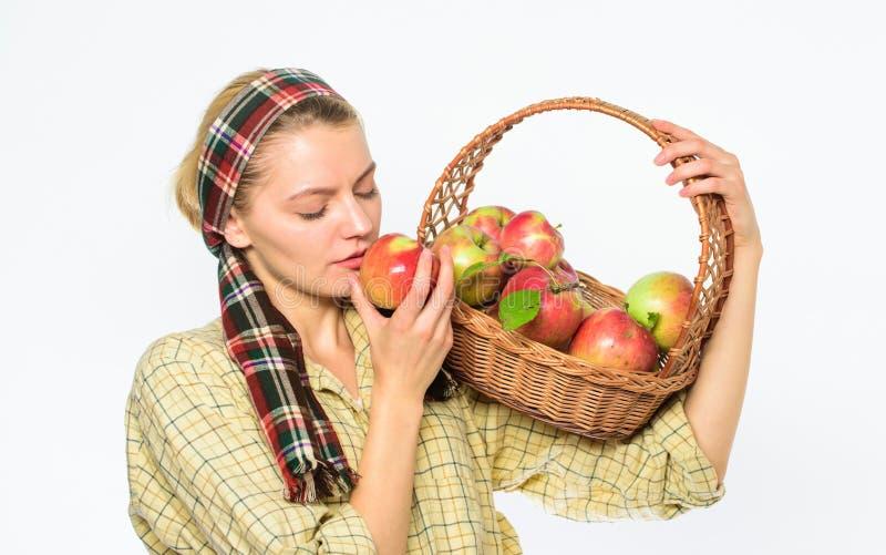 Eco友好的产品概念 妇女恳切的村民运载篮子用自然果子 夫人农夫花匠感到骄傲为她 免版税库存照片