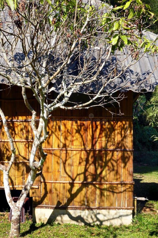 Eco旅游业手段竹子小屋 免版税库存照片