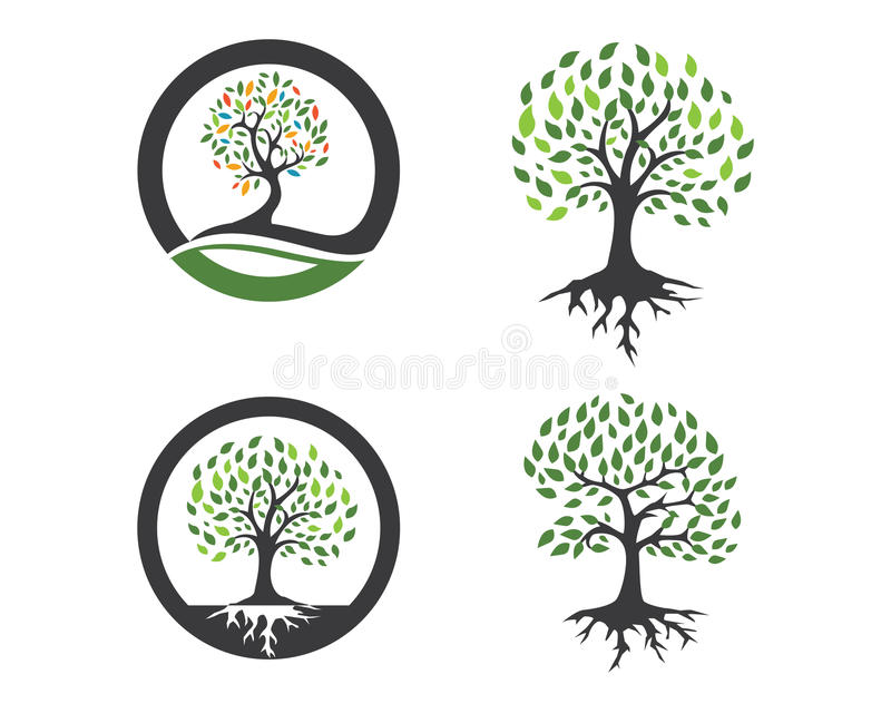 Eco树商标模板 向量例证