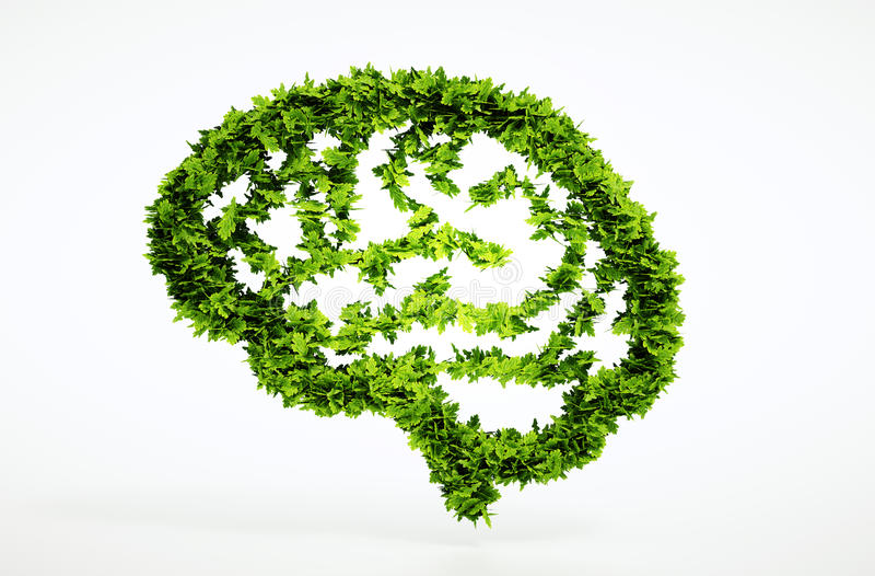 Eco自然智力概念 皇族释放例证