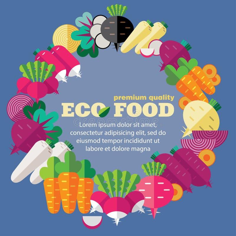 Eco食物(菜,根) + EPS 10 向量例证
