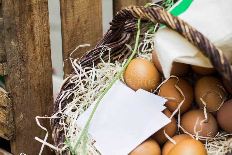 Eco ägg i en vide- korg fotografering för bildbyråer