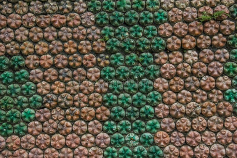 Eco ściana obrazy stock